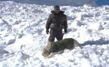 उत्तरी सियाचिन में बर्फीले तूफान से सेना के चार जवानों और दो कुलियों की मौत